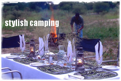 Moremi Wildlife Safari