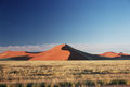 The apricot coloured dunes in Namibia's desert reach heights of about 300 metres